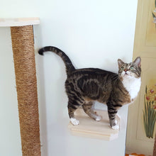 Cat Shelf - Natural Wood Cat Steps - Cat Climber