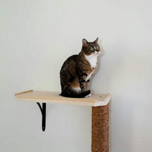 Wall Mounted Scratching Post with Optional Shelf