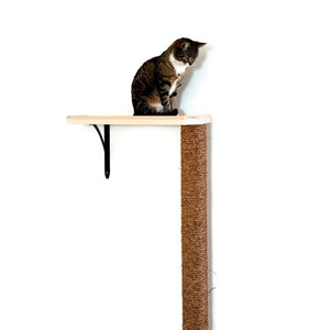 Cat Tree Climbing Pole - Wall Mounted Scratching and Climbing Post and Optional Shelf