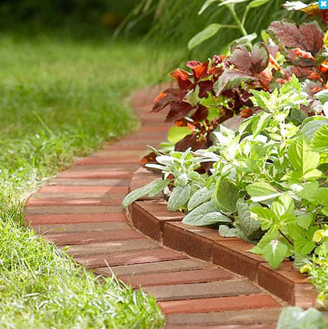 Make the most of your garden's borders and edges