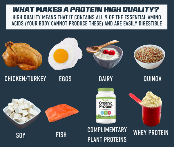 Sources of High Quality Protein Athlete