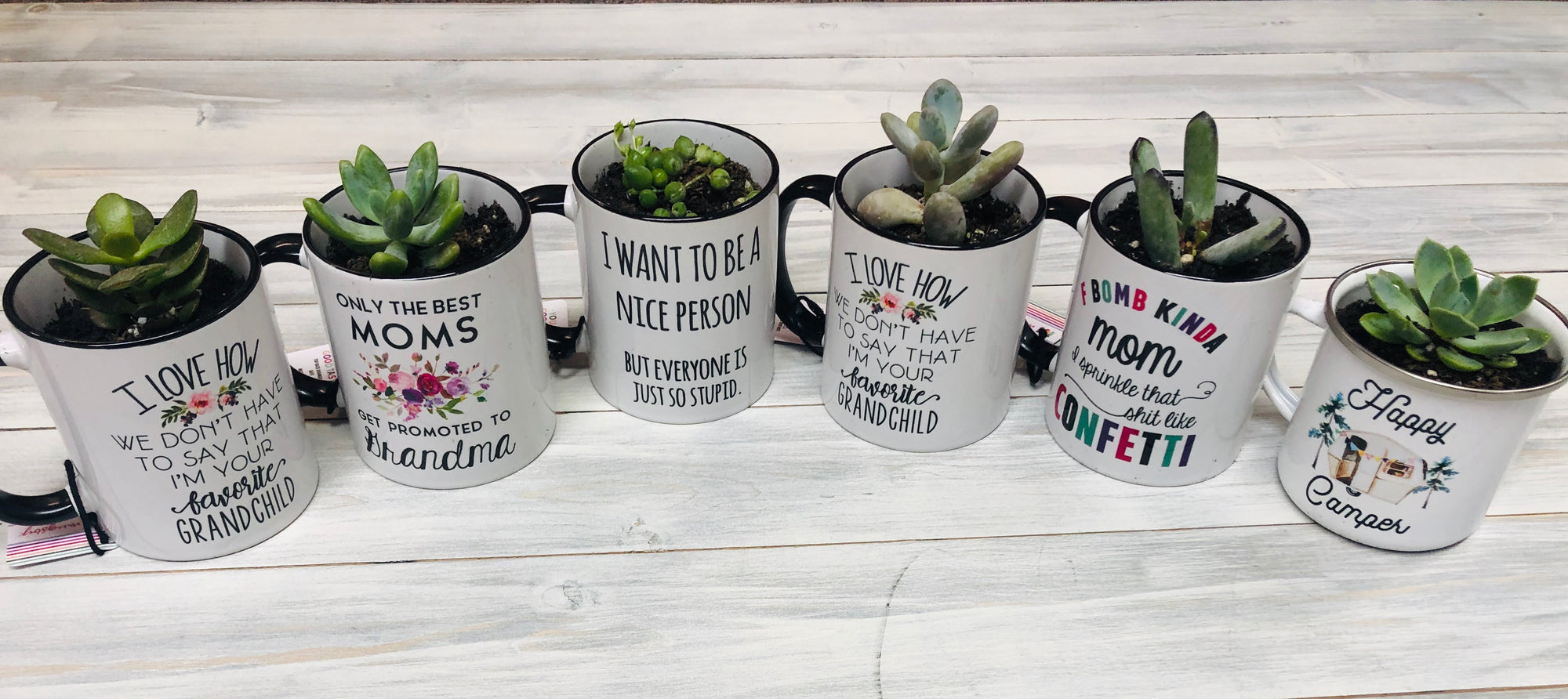 Mother's Day Succulent Bar Event