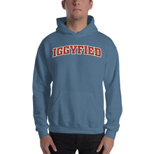 Load image into Gallery viewer, Iggyfied Hoodie