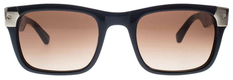 Shiny Black with Gold Tone Metal Wayfarer Sunglasses