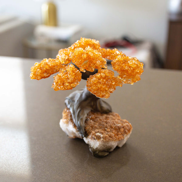 Medium Genuine Citrine Clustered Gemstone Tree on Citrine Matrix (The Harmony Tree)