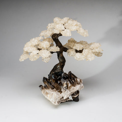 Custom - White Quartz Clustered Gemstone Tree on Smokey Quartz Matrix (The Tranquility Tree)