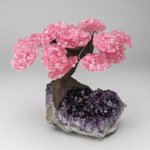 Genuine Rose Quartz Clustered Gemstone Tree on Amethyst Matrix (The Love Tree)