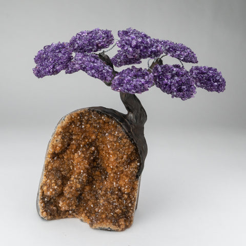 Custom - Amethyst Clustered Gemstone Tree on Citrine Matrix (The Empowerment Tree)