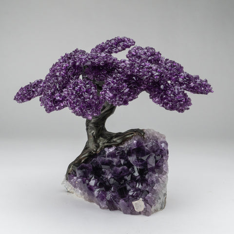 Custom - Amethyst Clustered Gemstone Tree on Amethyst Matrix (The Protection Tree)
