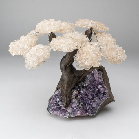 Genuine White Quartz Clustered Gemstone Tree on Amethyst Matrix (The Energy Tree)