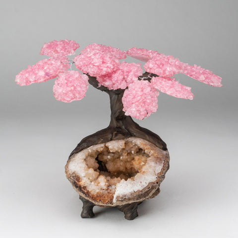 Custom - Genuine Rose Quartz Clustered Gemstone Tree on Citrine Matrix (The Comfort Tree)