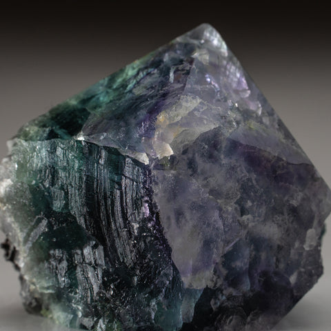 Rainbow Fluorite Point From Mexico (195.5 grams)