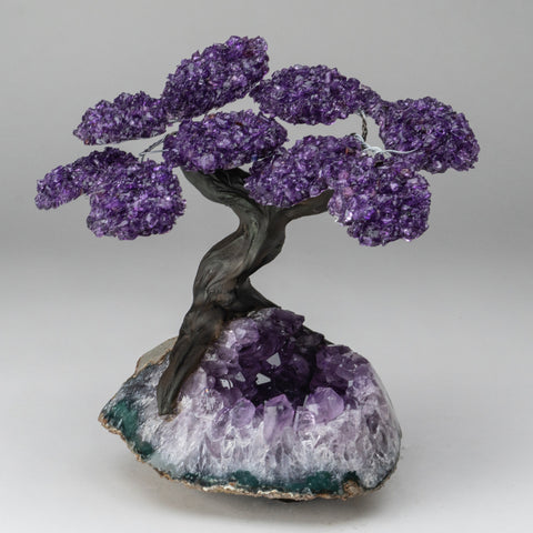 Genuine Amethyst Clustered Gemstone Tree on Amethyst Matrix (The Protection Tree)