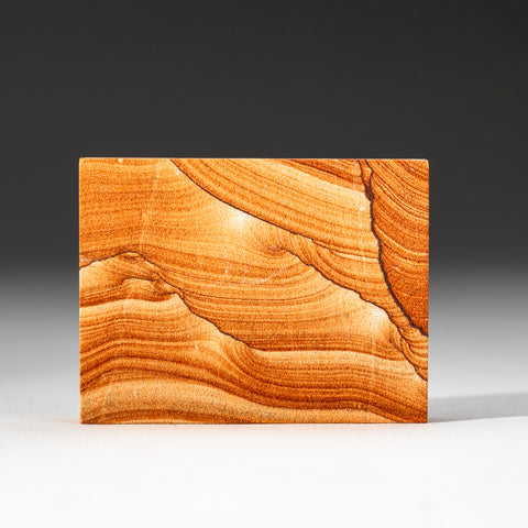 Sandstone Slice from Arizona (126.3 grams)