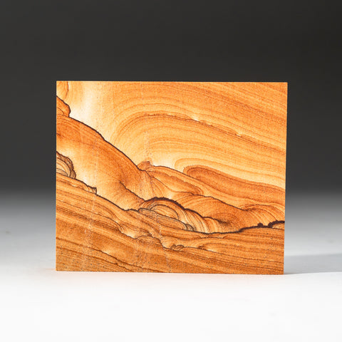 Sandstone Slice from Arizona (300.8 grams)