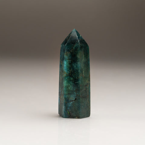 Polished Blue Apatite Freeform Madagascar (72.5 grams)