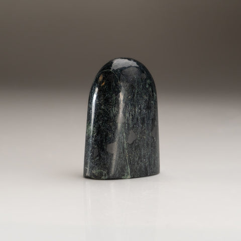 Polished Black Kyanite Freeform (126.6 grams)