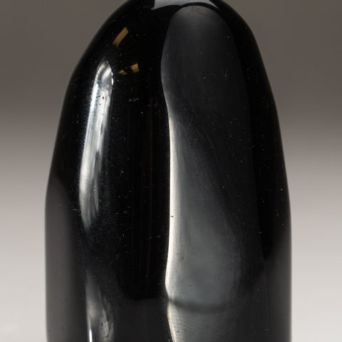 Black Obsidian Freeform (166.7 grams)