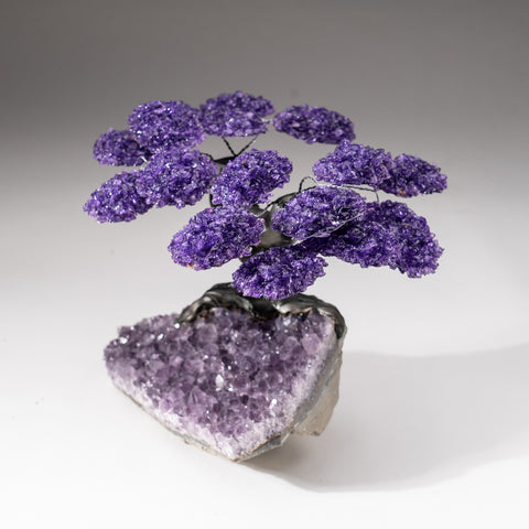 Custom - Genuine Druzy Amethyst Clustered Gemstone Tree on Amethyst Matrix (The Protection Tree)
