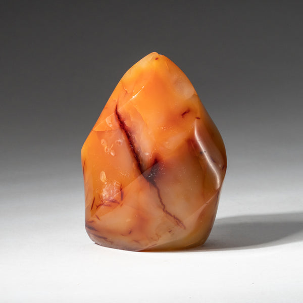 Polished Carnelian Agate Freeform from Madagascar (318.3 grams)