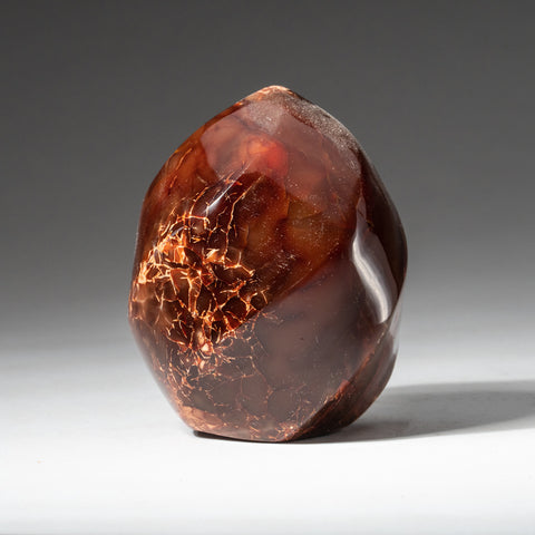 Polished Carnelian Agate Freeform from Madagascar (377.7 grams)