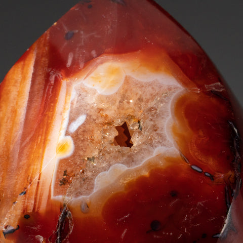 Polished Carnelian Agate Freeform from Madagascar (352.6 grams)