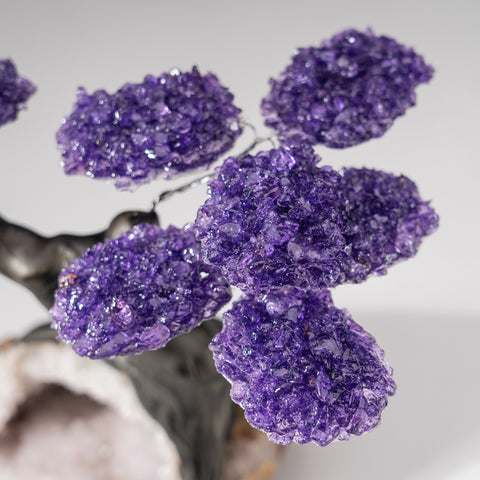 Custom - Genuine Amethyst Clustered Gemstone Tree on Quartz Matrix (The Protection Tree)