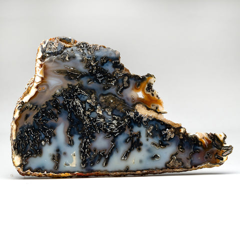 Dendritic Agate Slice From Brazil