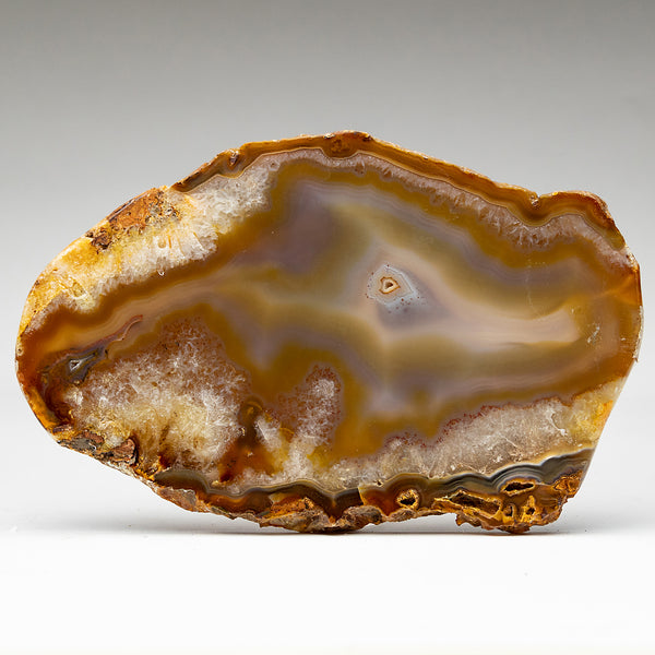 Banded Natural Agate Slice From Brazil