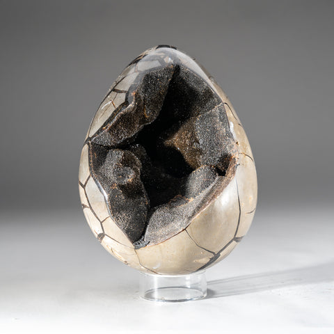 Septarian Druzy Geode Egg from Madagascar (12.5 lbs)