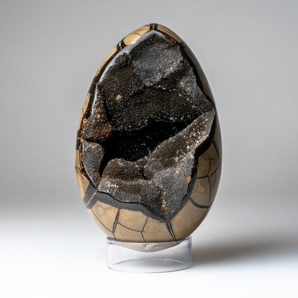 Septarian Druzy Egg from Madagascar (8 lbs)