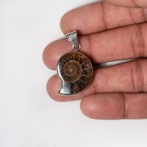 Ammonite in Sterling Silver Pendant