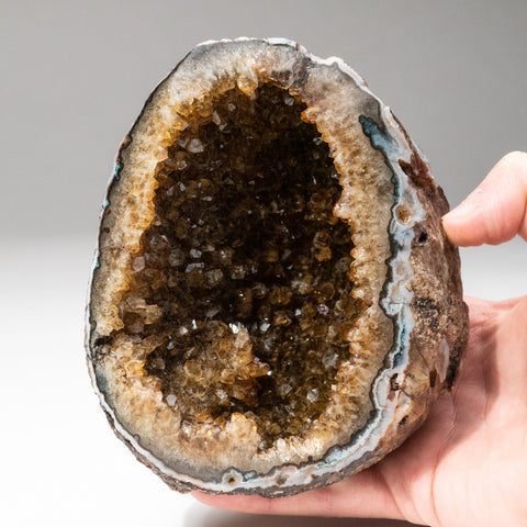 Citrine Quartz Crystal Cluster Geode From Brazil (2 lbs)