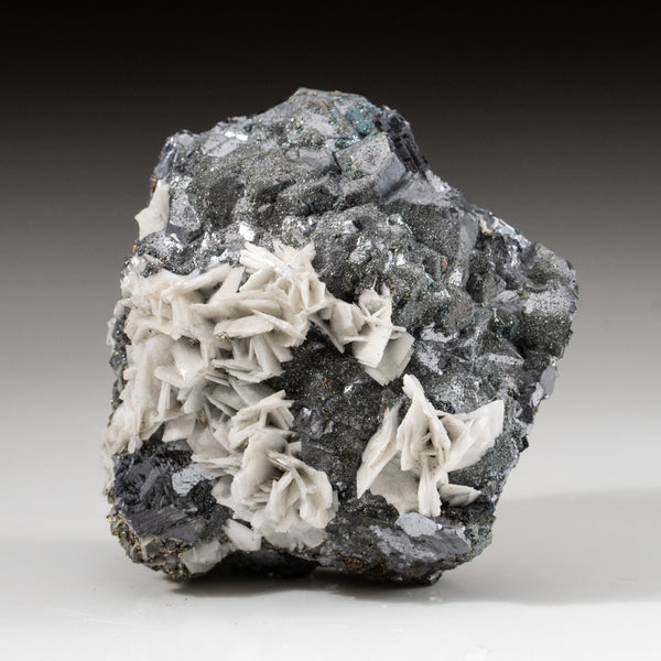Barite on Galena with Pyrite from Huanzala Mine, Huallanca District, Huanuco Department, Peru