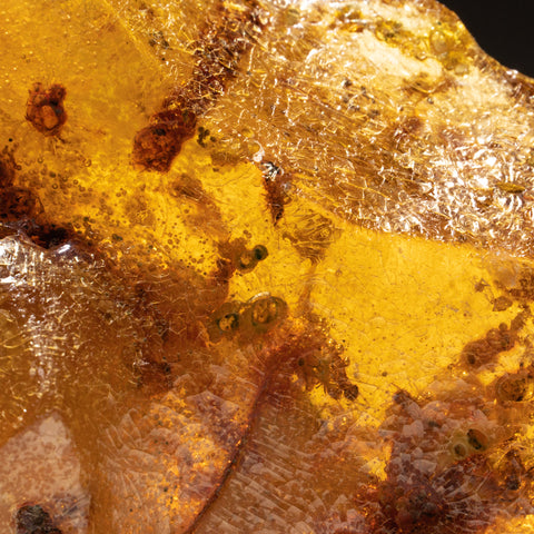 Copal Amber from Colombia (128.5 grams)