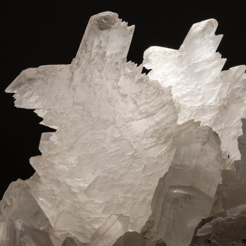 Gypsum var. Fishtail Selenite Twin from Ocampo, Coahuila, Mexico