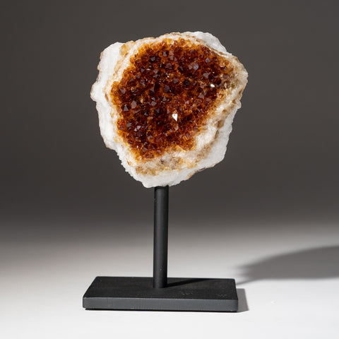 "Citrine Quartz Crystal Cluster on Metal Stand (6"", 2.8 lbs)"
