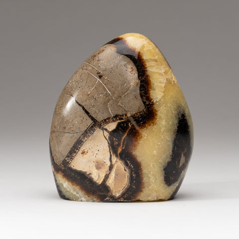 Polished Septarian Freeform from Madagascar (.9 lbs)