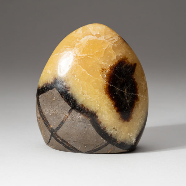 Polished Septarian Freeform from Madagascar (1.2 lbs)