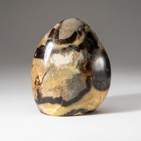 Polished Septarian Freeform from Madagascar (2.8 lbs)