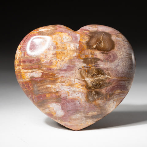 Petrified Wood Heart from Madagascar (283.3 grams)
