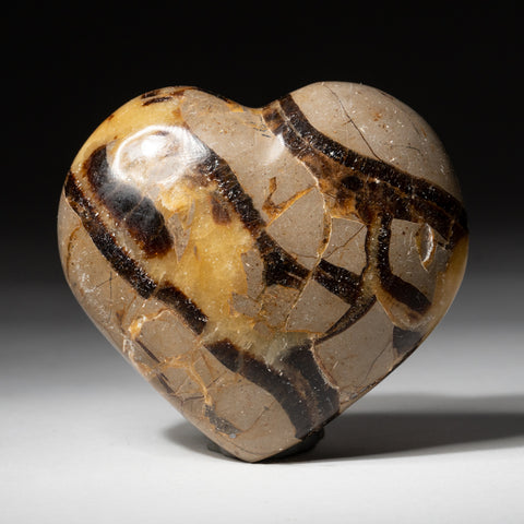 Polished Septarian Heart From Mexico (230.2 grams)