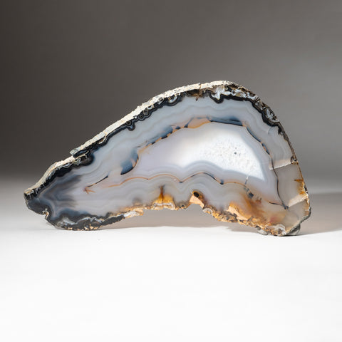 Natural Banded Agate Slice from Brazil (300.7 grams)