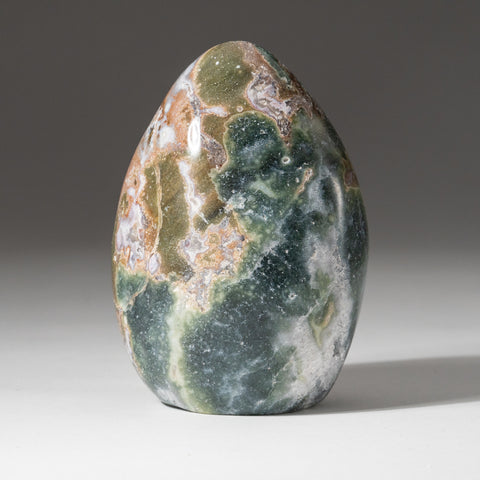 Polished Ocean Jasper from Madagascar (1.4 lbs)