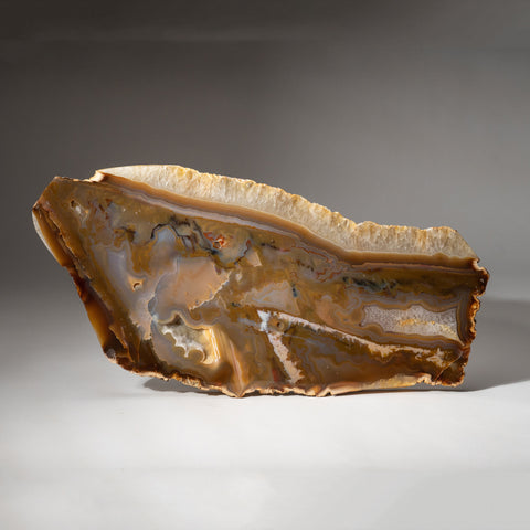 Natural Banded Agate Slice from Brazil (6.2 lbs)