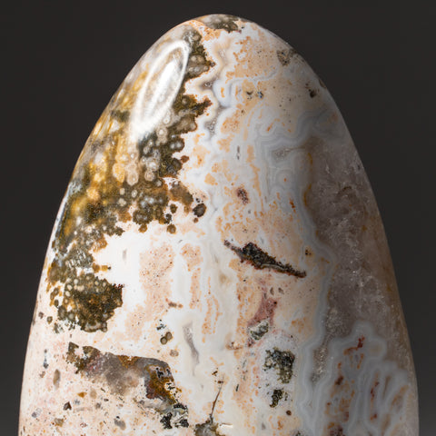 Polished Ocean Jasper from Madagascar (1.8 lbs)