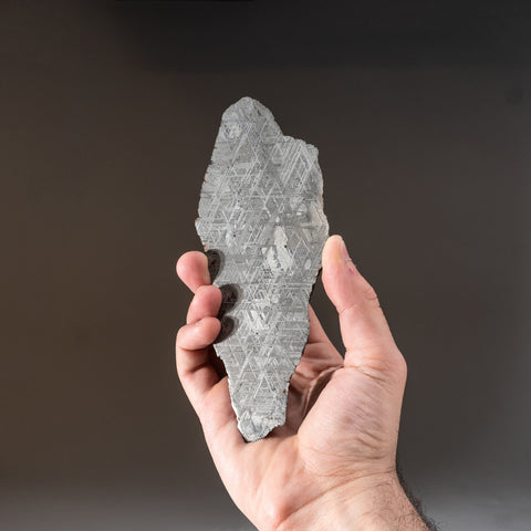 Genuine Muonionalusta Meteorite Slice (703 grams)