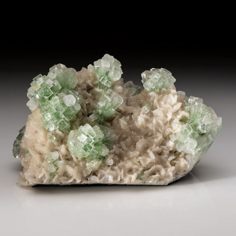 Green Apophyllite (Disco Ball) on Stilbite from Well Pocket. Rahuri, Ahmedangar India