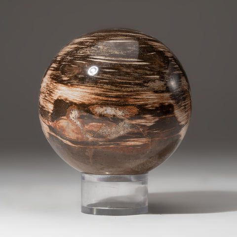 "Polished Petrified Wood Sphere from Madagascar (3.5"", 2.2 lbs)"