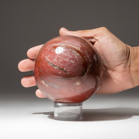 "Polished Petrified Wood Sphere from Madagascar (4"", 2.8 lbs)"